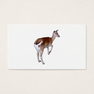 Cartão De Visitas Cervos fêmeas