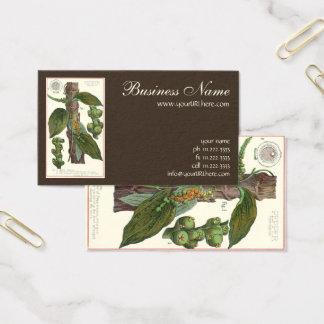 Cartão De Visitas Especiarias das ervas da comida do vintage, planta