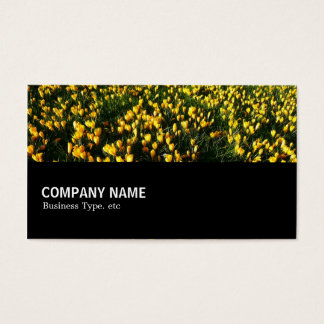Cartão De Visitas Incompletamente 044 - Açafrões