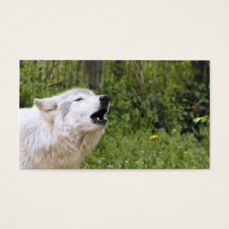 Cartão De Visitas Lobo de madeira 3 do urro
