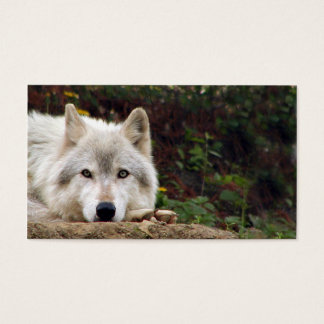 Cartão De Visitas Olhar fixo do lobo de madeira