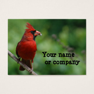 Cartão De Visitas Pássaro do Sr. Vermelho