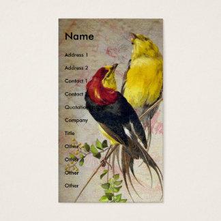 Cartão De Visitas Pássaros antigos