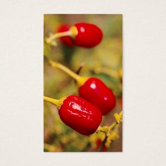 Cartão De Visitas Pimentas vermelhas - calendário do bolso