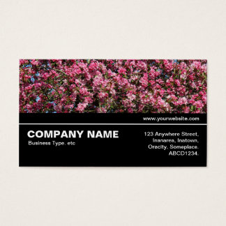 Cartão De Visitas V3 incompletos - Flor de cerejeira cor-de-rosa