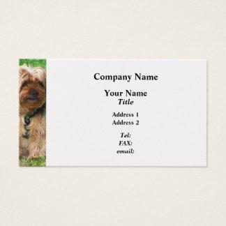Cartão De Visitas Yorkshire terrier no parque - revestimento da