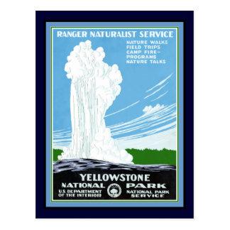Cartão de Yellowstone