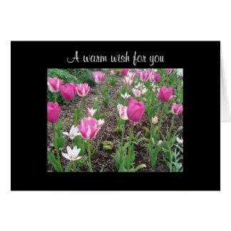 Cartão Desejo do aniversário do remendo da tulipa