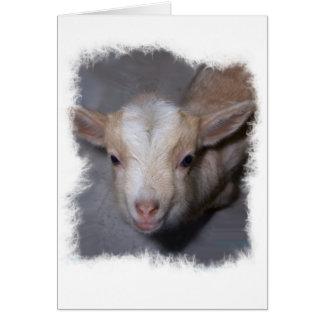 Cartão diminuto da cabra do bebê a personalizar