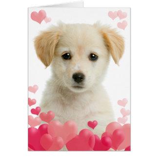 Cartão do amor de filhote de cachorro