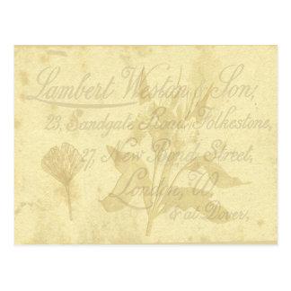 Cartão do cartão telefónico do vintage cartão postal
