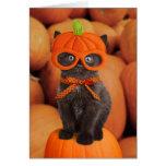 Cartão do Dia das Bruxas do gatinho da abóbora