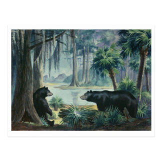 Cartão do Diorama do urso preto