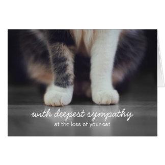 Cartão do falecimento da simpatia do gato
