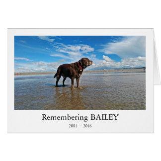 Cartão do falecimento do cão