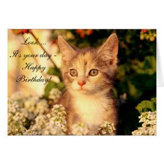 Cartão do feliz aniversario com gatinho