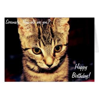 Cartão do feliz aniversario com gato sério