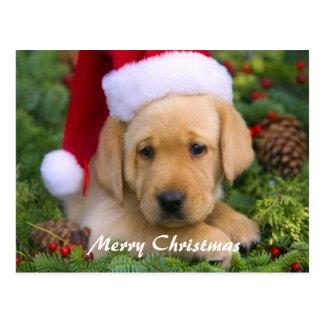 """Cartão do """"Feliz Natal """" Cartão Postal"""