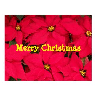 Cartão do Feliz Natal Cartão Postal