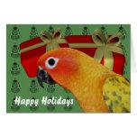Cartão do feriado do Natal do papagaio de Sun Conu