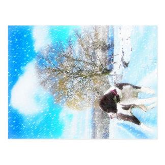 Cartão do feriado do Spaniel de Springer