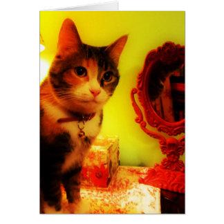 Cartão do gato do espelho, envelope