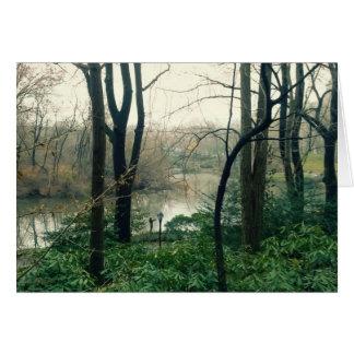 Cartão do lago central Park