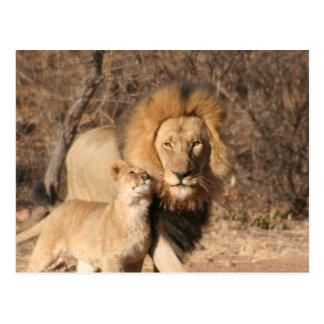 Cartão do leão e do Cub de leão