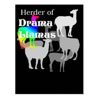 Cartão do pastor do lama do drama cartão postal