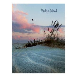 Cartão do por do sol da duna da ilha de Pawleys