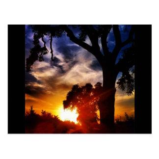 Cartão do por do sol de Visalia