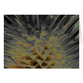 Cartão do SUpernova da grama selvagem