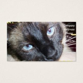 Cartão do veterinário do gato cartão de visita