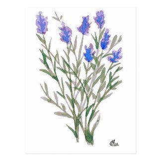 Cartão do Wildflower Cartão Postal
