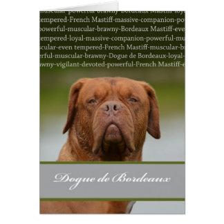 Cartão Dogue de Bordéus, descrição da raça do cão