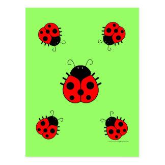 Cartão dos joaninhas cartão postal