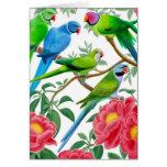 Cartão dos Parakeets e das peônias
