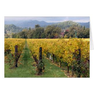 Cartão dos vinhedos de Califórnia