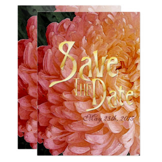 Cartão Economias cor-de-rosa de quarta-feira do