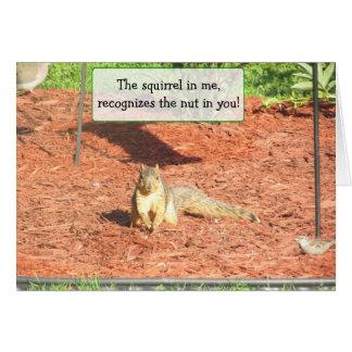 Cartão engraçado da amizade do humor do esquilo