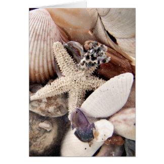 Cartão Escudos do mar