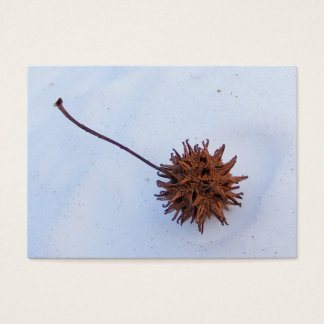 Cartão espinhoso do ATC do ~ da semente