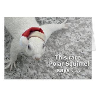 Cartão Esquilo do Natal