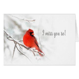 Cartão Eu falto-o - cena cardinal vermelha da neve