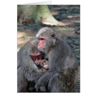 Cartão Família de macaco
