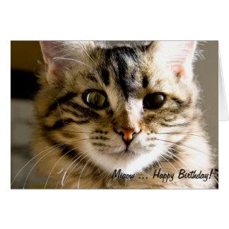 Cartão Feliz aniversario de Miaow…!