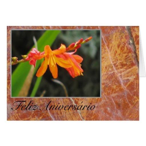 Cartão: Feliz Aniversário - flor alaranjada