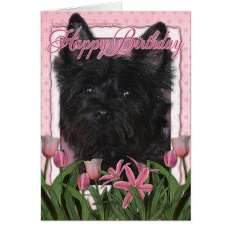 Cartão Feliz aniversario - monte de pedras Terrier -