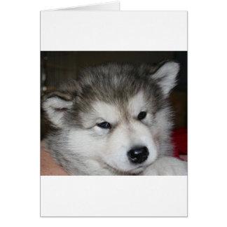 Cartão filhote de cachorro 2.png do mal
