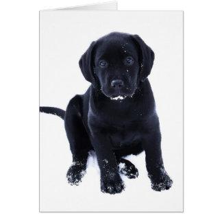 Cartão Filhote de cachorro da neve - Labrador preto
